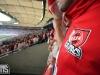VfB Stuttgart - 1. FC Köln
